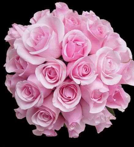 Цветы как подарок женский сайт